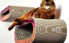 wie man mit katze stilvoll wohnt einrichten sch ner. Black Bedroom Furniture Sets. Home Design Ideas