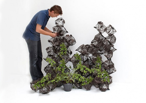 Rankhilfe tumbleweed f r zimmerpflanzen tipp des tages for Bambusmobel hamburg