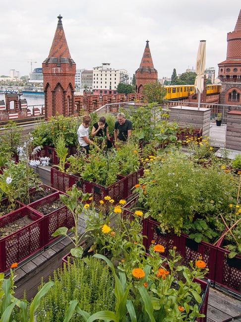 urban gardening gemeinschaftsg rten in der stadt sch ner wohnen. Black Bedroom Furniture Sets. Home Design Ideas