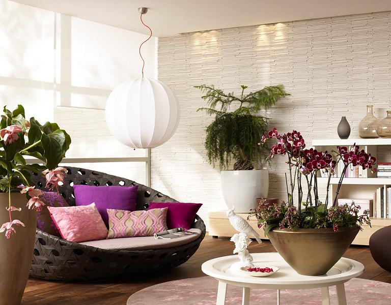 zimmerpflanzen pflege und einrichtungsideen sch ner. Black Bedroom Furniture Sets. Home Design Ideas