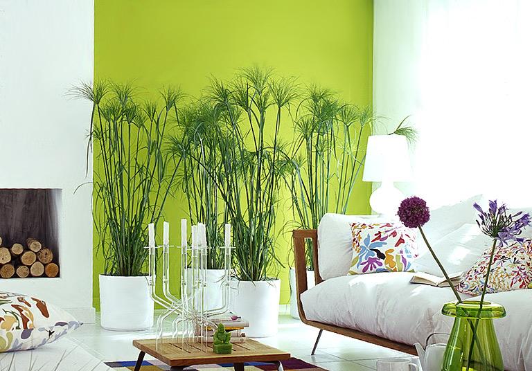 wohnen mit farben wandfarben blau gelb und orange sch ner wohnen. Black Bedroom Furniture Sets. Home Design Ideas