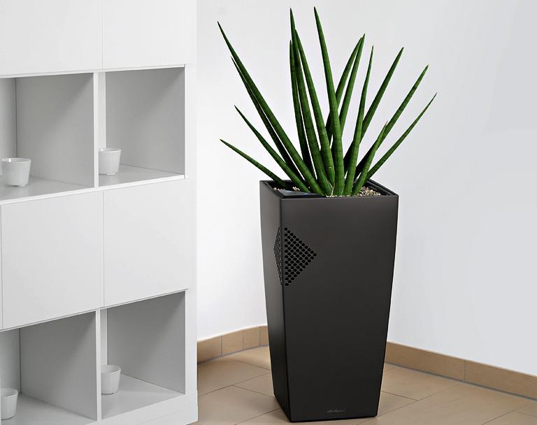 luftbefeuchter airclean von lechuza sch ner wohnen. Black Bedroom Furniture Sets. Home Design Ideas