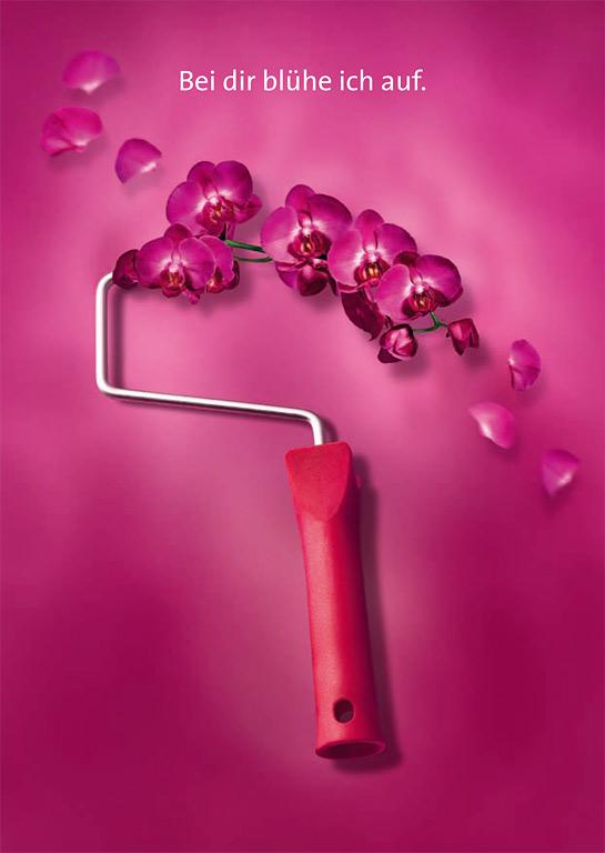aktuelle farbtrends jubil ums trendfarbe orchidee von sch ner wohnen farbe bild 9. Black Bedroom Furniture Sets. Home Design Ideas