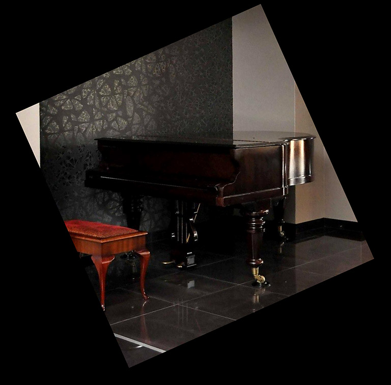 wm 2010 innenausstattung mit konzertfl gel bild 10 sch ner wohnen. Black Bedroom Furniture Sets. Home Design Ideas