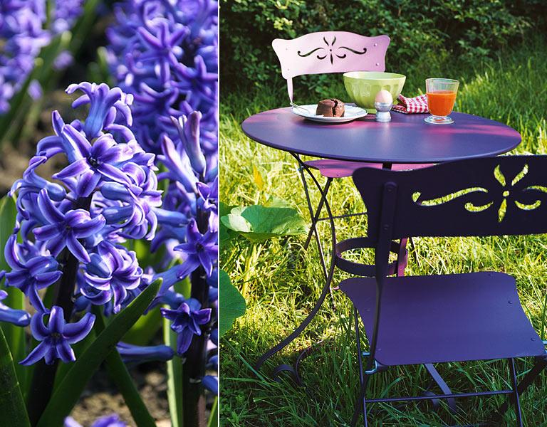 Fr hjahrskur hyazinthe tiefes violett bild 3 - Magenta wandfarbe ...