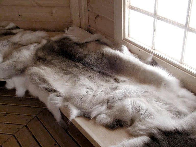 kuschlige w rme auf felle setzen bild 19 sch ner wohnen. Black Bedroom Furniture Sets. Home Design Ideas