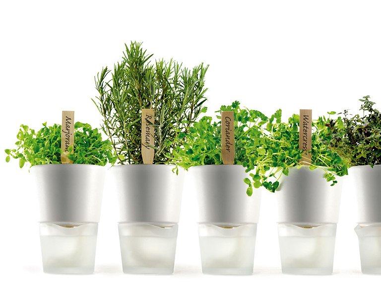 wohnen mit pflanzen cleveres design f r zimmerpflanzen. Black Bedroom Furniture Sets. Home Design Ideas
