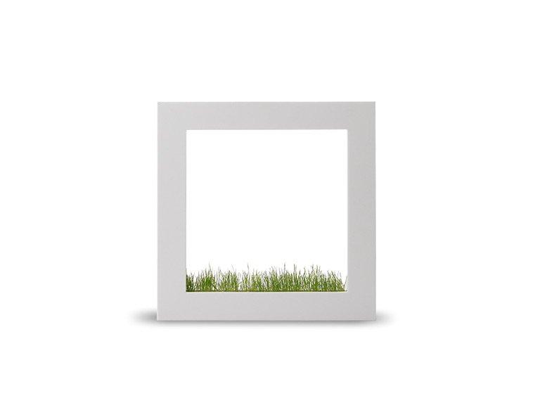 wohnen mit pflanzen bepflanzbarer bilderrahmen picture square bild 11 sch ner wohnen. Black Bedroom Furniture Sets. Home Design Ideas