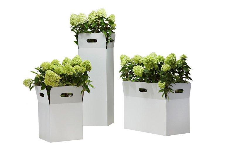 Design pflanzbox von flora den typischen ton töpfen aus dem