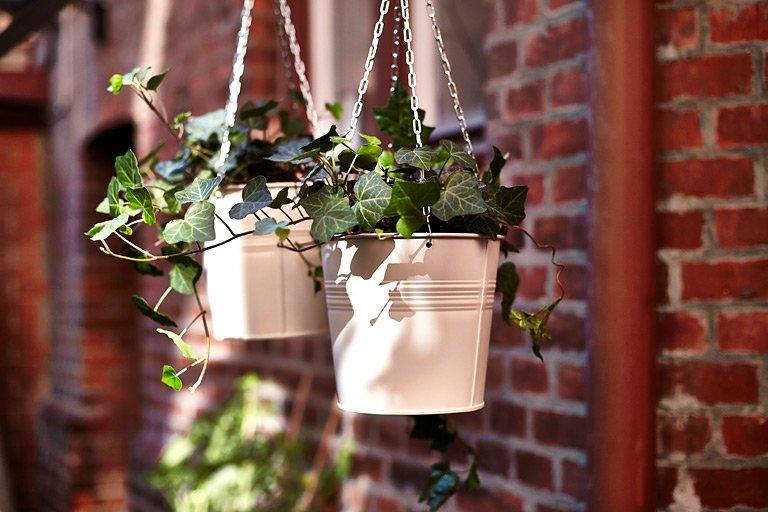 """Gartenmöbel: Hängende Gärten: Blumenampel """"Socker"""" - Bild"""