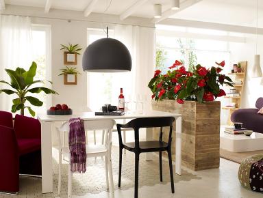 einrichten pflanzen als raumteiler bild 10 sch ner wohnen. Black Bedroom Furniture Sets. Home Design Ideas