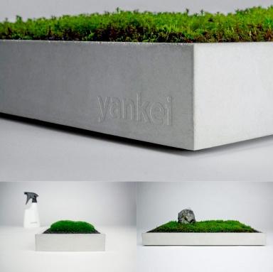 produktpr sentation mit viel gr n designer und stylisten entdecken topfpflanzen und moos 6. Black Bedroom Furniture Sets. Home Design Ideas