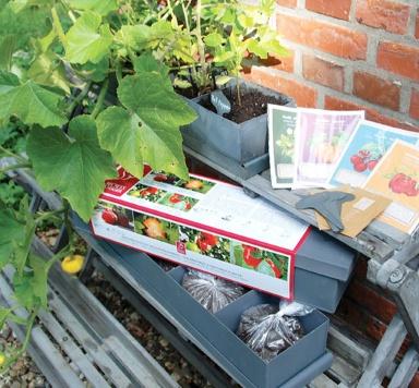 Gärtnern in der Stadt: Pflanzbox \