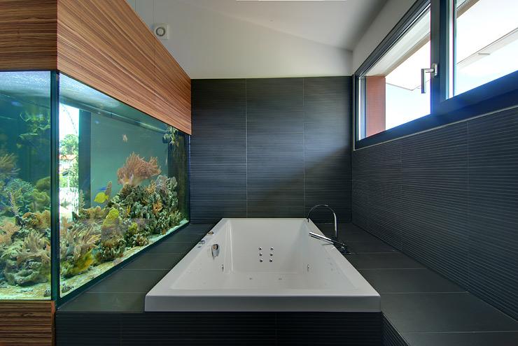 kubisches fertighaus mit satteldach fertigh user. Black Bedroom Furniture Sets. Home Design Ideas