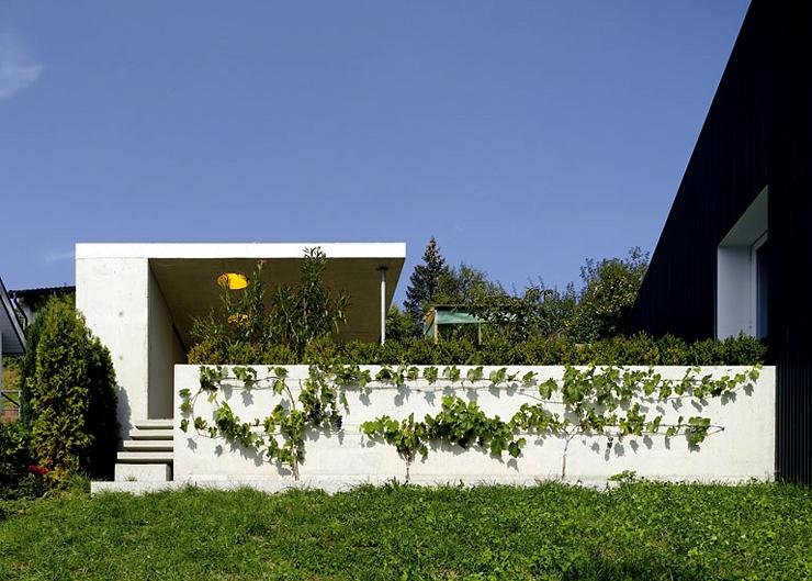 single haus mit asymmetrischem dach kleine h user. Black Bedroom Furniture Sets. Home Design Ideas